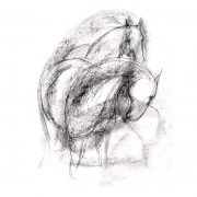 Abstract 1 Horses charcoal and pencil on paper