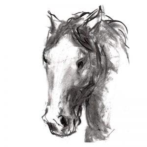 Charcoal 10 Horse's head charcoal drawing MUG