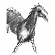 Charcoal 6 Jumping horse charcoal drawing lo res