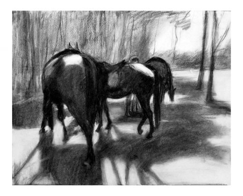 Laikipia 2 Sonya and the horses charcoal on paper