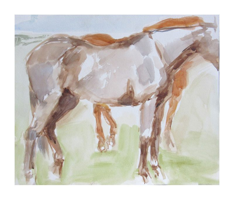 Watercolour sketch of horses