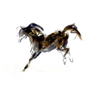 Watercolour sketch of horse