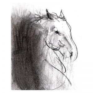 Abstract 4 Horse's head charcoal