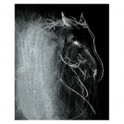 Abstract 4 horse's head charcoal invert