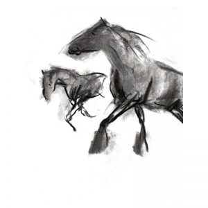 Charcoal 3 two horses in paddock charcoal drawing MUG
