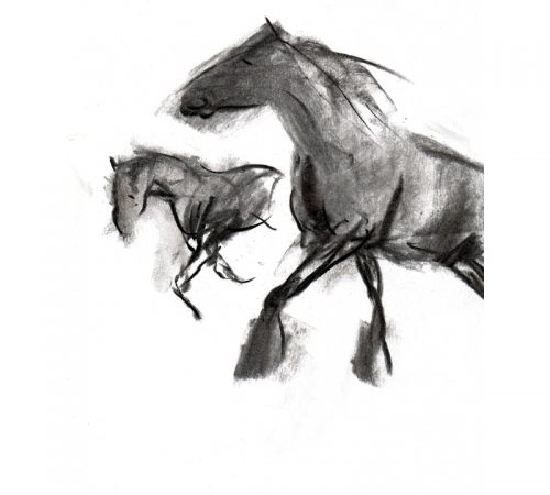 Charcoal 3 two horses in paddock charcoal drawing