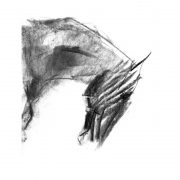 Charcoal 4 Horse's head charcoal drawing