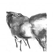 Charcoal 7 Horse standing charcoal drawing lo res