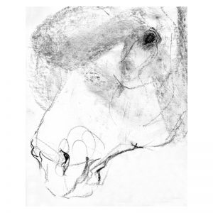 Detail 7 Horse's head charcoal drawing