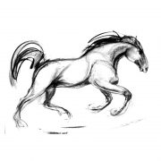 Racing scenes 9 Stallion in the paddock charcoal drawing