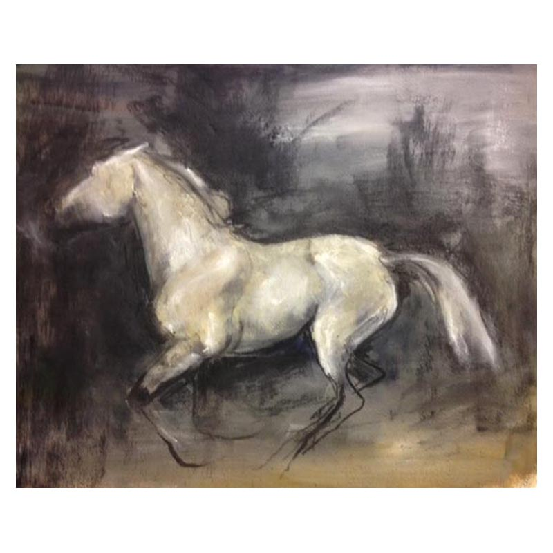 Silver beauty 460 x 380 charcoal and paint on paper