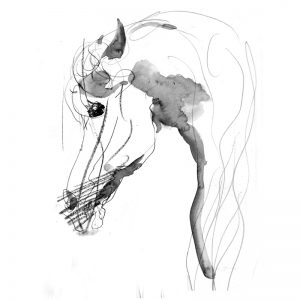 Wary eye horse drawing in ink and wash