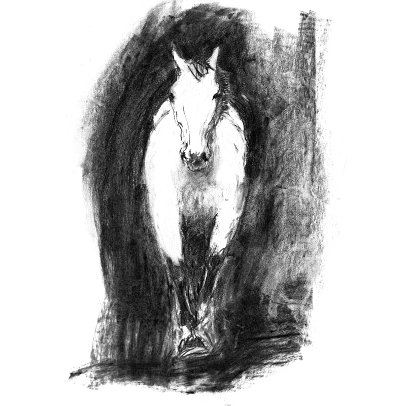 Grey Leaper charcoal on paper