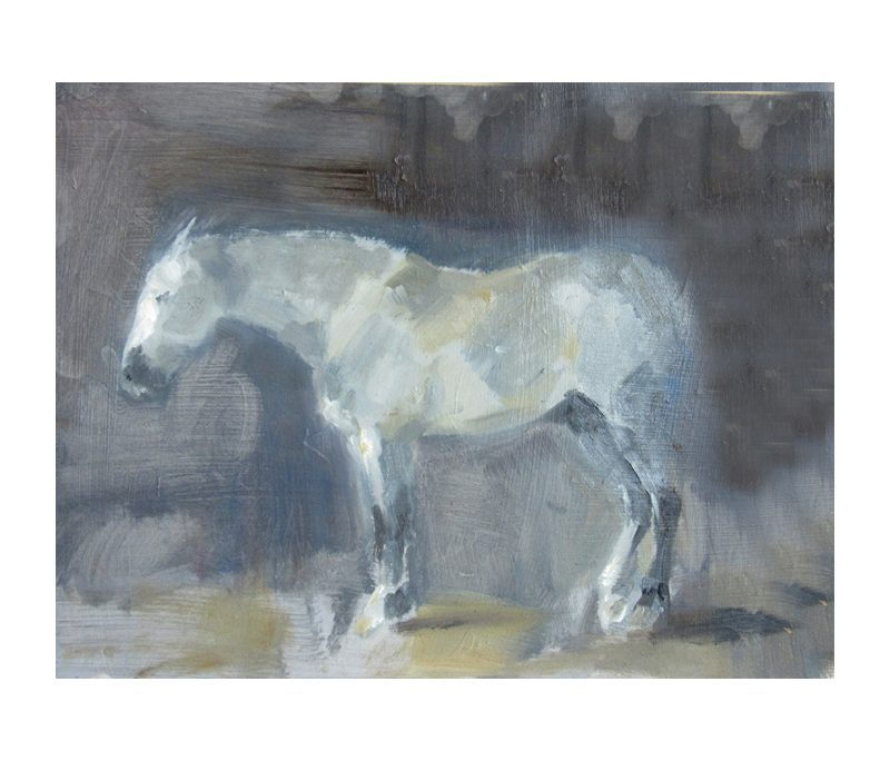 Grey horse 0 oil sketch on board