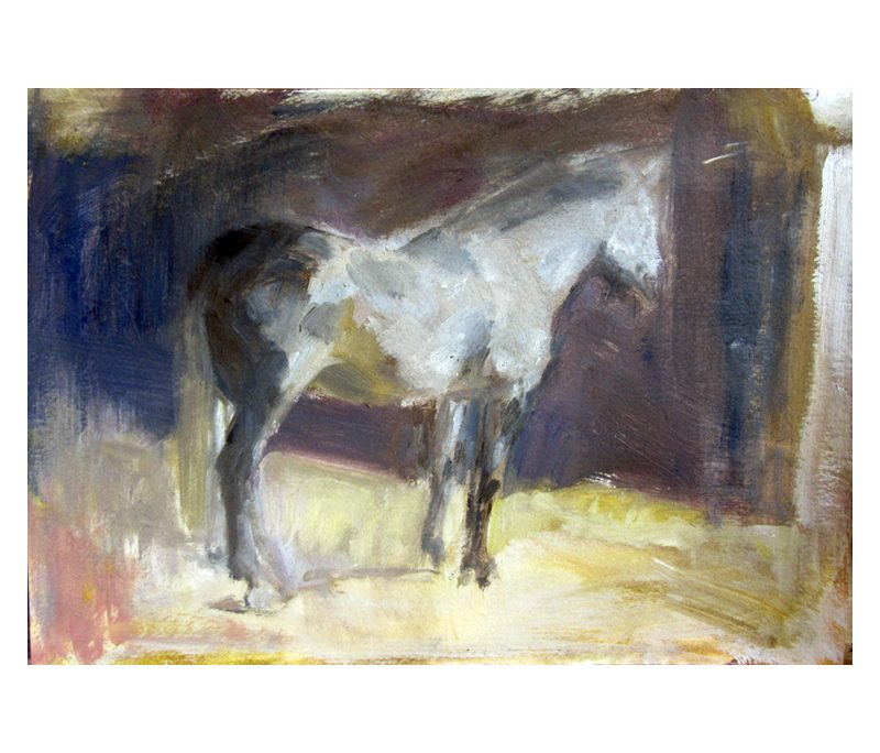 Grey horse study - watercolour on paper