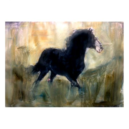 Black horse in field paint on paper