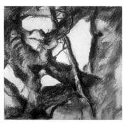Knapstrub 1b Charcoal study Diana Hand