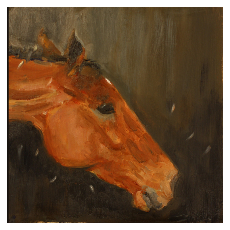 Horse shaking its head oil paint on canvas Diana Hand