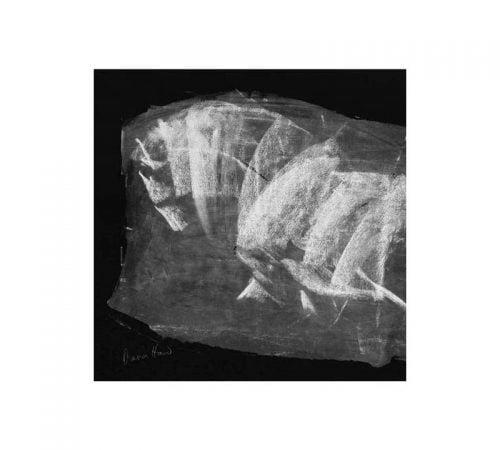 Ghost Horse 125 sq card Diana Hand