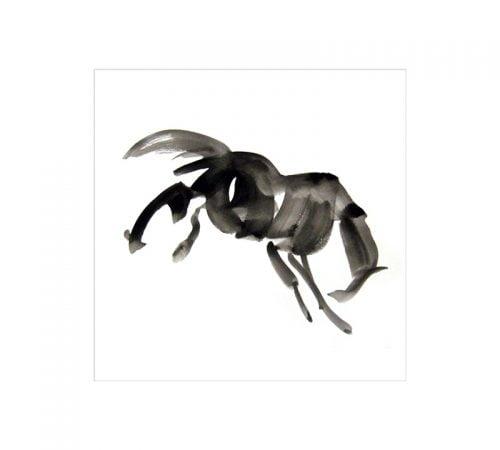 Bucking horse greetings card 125 sq Diana Hand