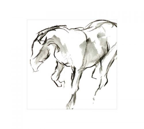 galloping horse 125mm square greetings card Diana Hand