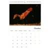 Calendar Diana Hand October 2019