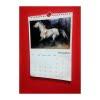 Diana Hand horse calendar 2019