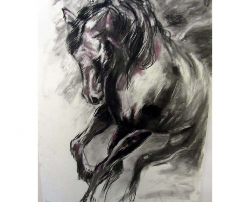 Francis Hayes Charcoal drawing