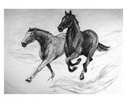 Diana Hand Two Horses charcoal drawing