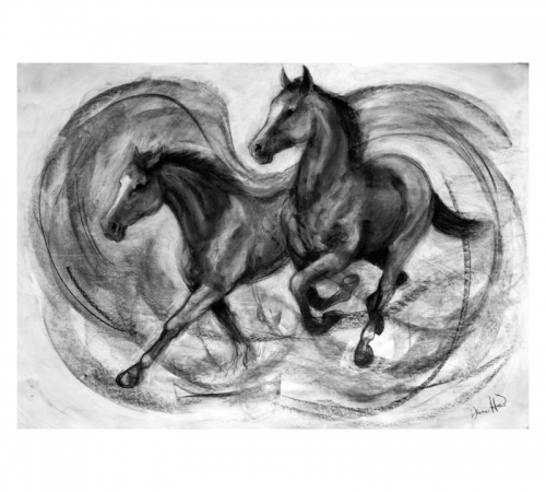 Two Horses Charcoal Drawing Diana Hand