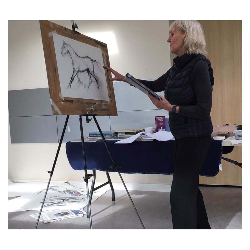 Drawing Horses workshop with Diana Hand