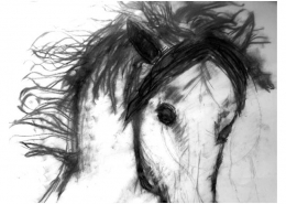 Drawing Horses workshop with Diana Hand Charcoal drawing by student
