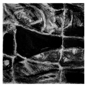 Detail charcoal abstract drawing Diana Hand