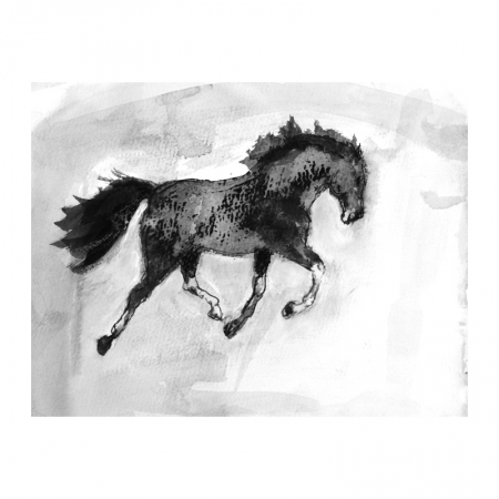 Diana Hand ink horse drawing