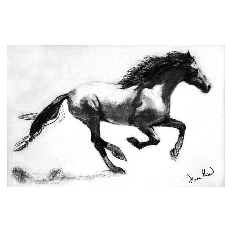 Mustang charcoal drawing by Diana Hand